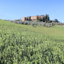 Tuscan Castle for Sale image 5