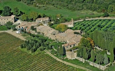 Estate with Winery and Entire Village, in 340 Hectares