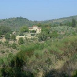 Chianti Farmhouse with Pool and 2 Hectares 11