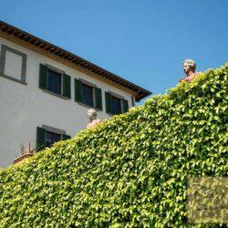 Auction Property | Breathtaking Estate Near Pescia 7