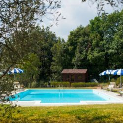 Beautiful Farmhouse with pool for sale near Chianni, Tuscany (2)-1200