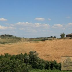 Winery and Agriturismo near Castellina in Chianti 33
