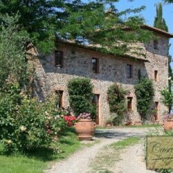 Winery and Agriturismo near Castellina in Chianti 1