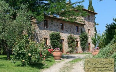 Winery and Agriturismo near Castellina in Chianti