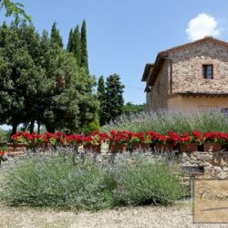 Winery and Agriturismo near Castellina in Chianti 6