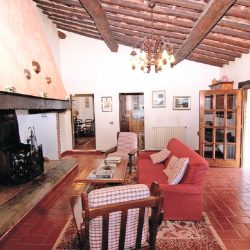 Chianti farmhouse with Outbuildings + 750 Olives (11)