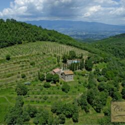 Two Chianti Houses with Annex + Pool 4