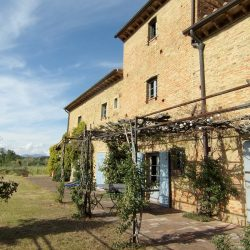 Farmhouse near Pisa with Wine Production for Sale (1)-1200