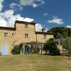 Farmhouse near Pisa with Wine Production for Sale (10)-1200