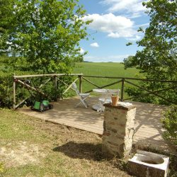 Farmhouse near Pisa with Wine Production for Sale (12)-1200