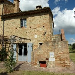Farmhouse near Pisa with Wine Production for Sale (14)-1200