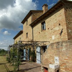 Farmhouse near Pisa with Wine Production for Sale (16)-1200