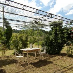Farmhouse near Pisa with Wine Production for Sale (17)-1200