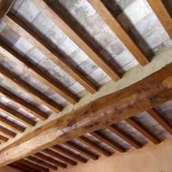 Farmhouse near Pisa with Wine Production for Sale (21)-1200