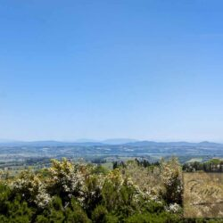 Farmhouse with Olives + Pool near Montepulciano 12