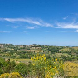 Farmhouse with Olives + Pool near Montepulciano 15