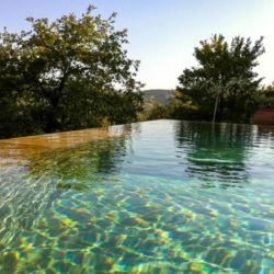 Chianti Farmhouse with Pool and 2 Hectares 8