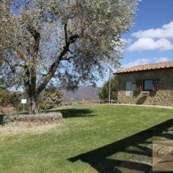 Organic Farm With Olive Grove + Pool 6