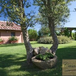 Property with pool for sale near Citta della Pieve, Umbria (15)