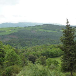 Apartment with Pool for Sale near San Gimignano image 30