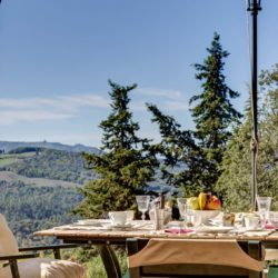 Apartment with Pool for Sale near San Gimignano image 38