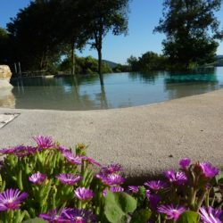 Apartment with Pool for Sale near San Gimignano image 4