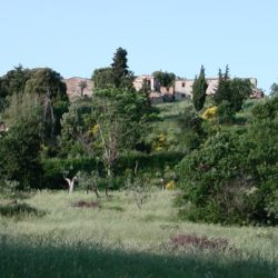 Apartment with Pool for Sale near San Gimignano image 7