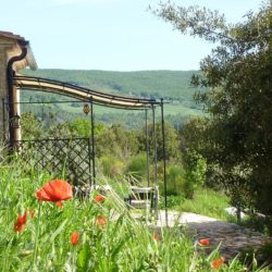 Apartment with Pool for Sale near San Gimignano image 37