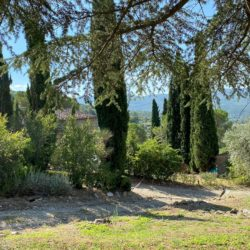 Tuscan House with Annex and Pool near Cortona 4