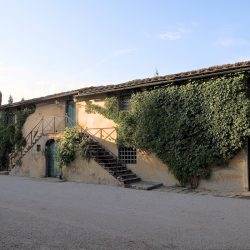 Estate with 45 Hectares for Sale image 51