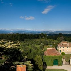 Estate with 45 Hectares for Sale image 14