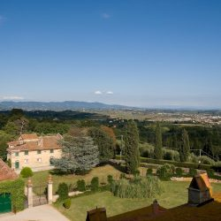 Estate with 45 Hectares for Sale image 13