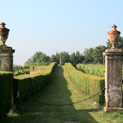 Estate with 45 Hectares for Sale image 52
