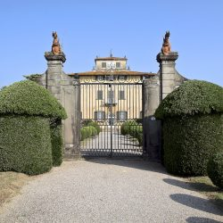 Estate with 45 Hectares for Sale image 41