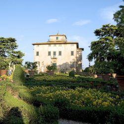 Estate with 45 Hectares for Sale image 53