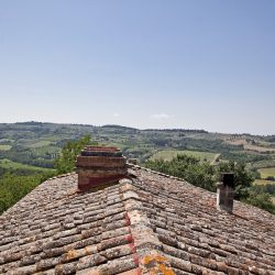 Historic Villa near Florence for Sale image 54