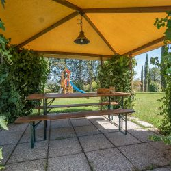 V4151 Large farmhouse for sale near Siena (32)-1200