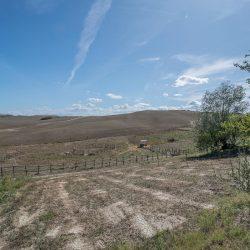 V4151 Large farmhouse for sale near Siena (51)-1200