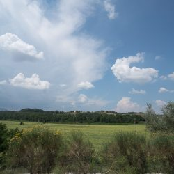 Umbrian Property Image 37
