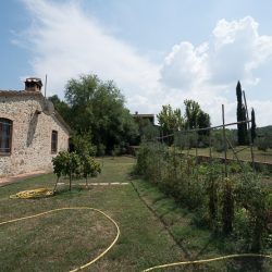 Umbrian Property Image 43