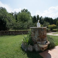Umbrian Property Image 26