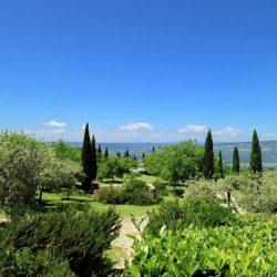 V4595C Villa with Lake View Civitella del Lago (8)