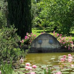 V4595C Villa with Lake View Civitella del Lago (9)