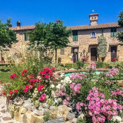 V4697ab Umbria Farmhouse B&B more (2)-1200