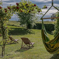 Orvieto farmhouse with pool for sale 3
