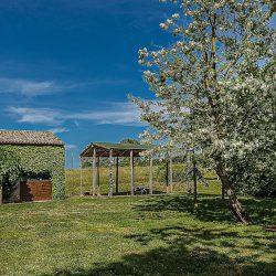 Orvieto farmhouse with pool for sale 38