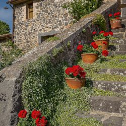 Orvieto farmhouse with pool for sale 43