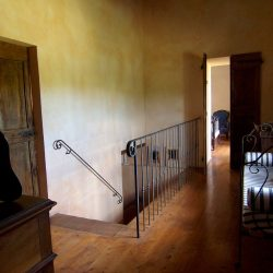 V5049HT Farmhouse near Pisa with Wine Production for sale - 1200 (1)