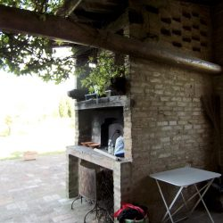 V5049HT Farmhouse near Pisa with Wine Production for sale - 1200 (10)