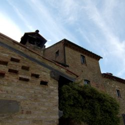 V5049HT Farmhouse near Pisa with Wine Production for sale - 1200 (14)
